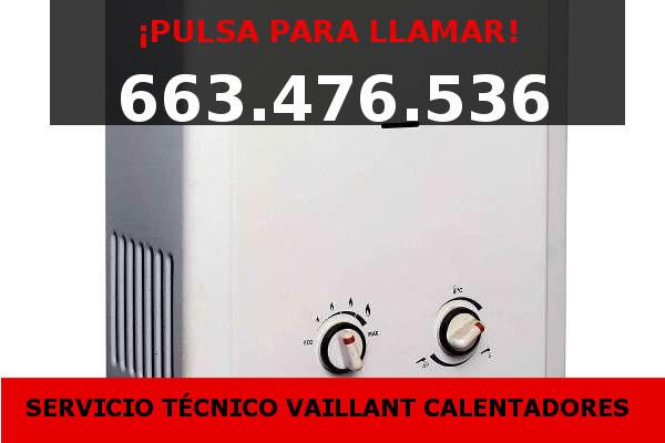 calentadores vaillant Valencia