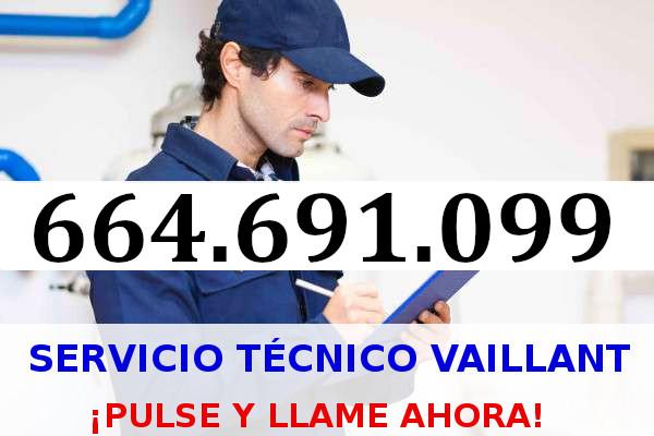 SAT 24 horas Termo Eléctrico Vaillant Sant Vicenç de Montalt